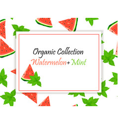Sweet juicy slice of watermelon and mint vector