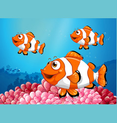 Three clownfish under the ocean vector