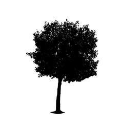 tree 01 vector image