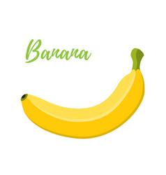 banana cartoon flat style vector image