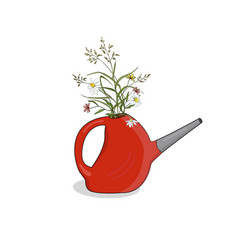 bouquet meadow herbs in a red watering can vector image