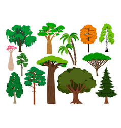 cartoon trees green tree set brachychiton vector image