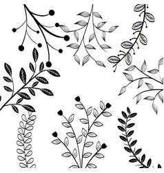 Hand-drawn leaves design vector