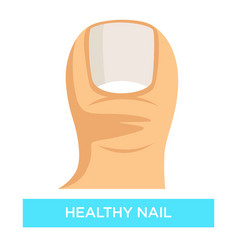 Healthy nail toenail fungus infection prevention vector