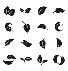 Icons of leaves vector image