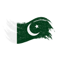 National flag of pakistan designed using brush vector