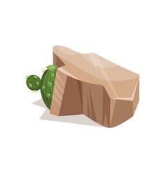 rock stone and green plant landscape design vector image
