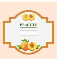Peaches vector image