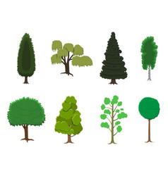 set of various stylized trees in flat style vector image
