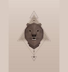 brown bear head geometric silhouette vector image