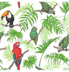 Parrots toucan and palm leaves pattern vector