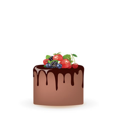 chocolate cake with forest fruits vector image