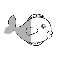 Cute fish pet icon vector