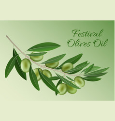 green festival olives oil concept background vector image