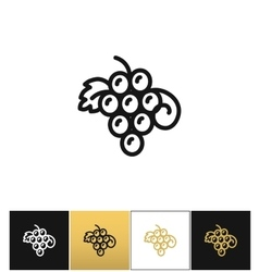 Hanging grapes or vine grape with leaves vector