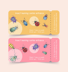 Insect and bird ticket design with ladybug beetle vector