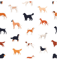 seamless pattern with companion dogs of different vector image