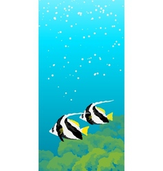 Two striped coral fishes under water vector image