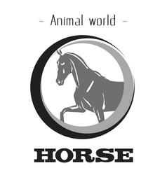 animal world horse circle horse background vector image