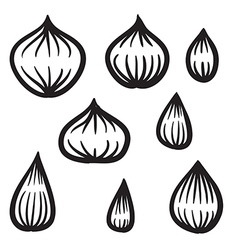 Hand Drawn Onion Set vector image