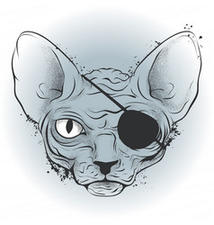 Ink drawing bald cat pirate with an eye patch vector