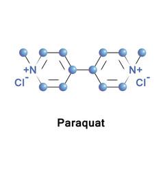 Paraquat organic viologen vector