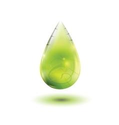 Olive oil drop vector image