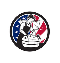 American laundry usa flag icon vector