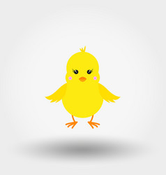 chick icon flat vector image