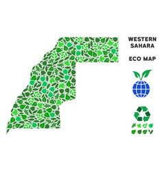 ecology green composition western sahara vector image