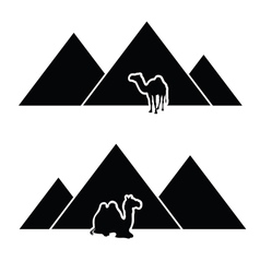 pyramid with camel vector image
