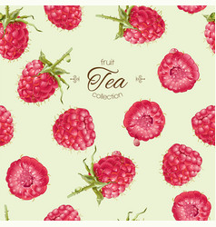 Raspberry tea seamless pattern vector