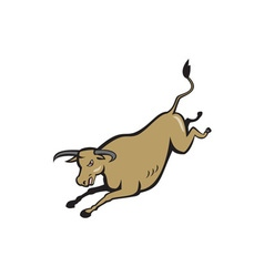 Texas Longhorn Bull Jumping Cartoon vector image