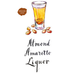 Wineglass almond liquor amaretto vector