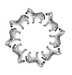 zebra in circle vector image vector image