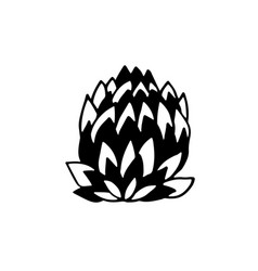 artichoke icon vegetable flower vector image