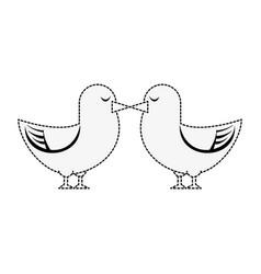 dove cute bird vector image vector image