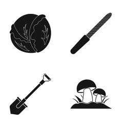 Cabbage nail file and other web icon in black vector