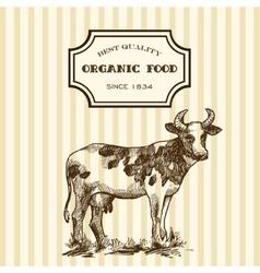 hand drawn milk vector image
