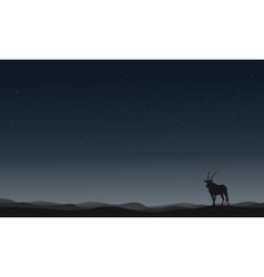 One Antelope silhouettes in hill vector image