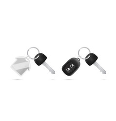 realistic car and home key with alarm system vector image