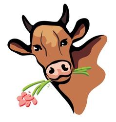 happy cow portrait vector image