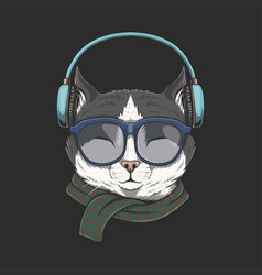 cat wears headphones vector image