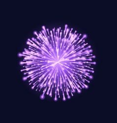 Firework isolated beautiful purple vector