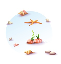 Image set of seashells and stones vector
