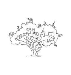 single one line drawing exotic japanese sakura vector image