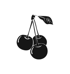 Three ripe cherries with leafs vector
