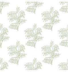 Colored shrubbery sophora pattern in hand-drawn vector