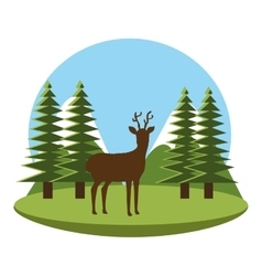 Forest natural parks and landscape vector