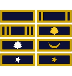 Insignia Army of Mississippi vector